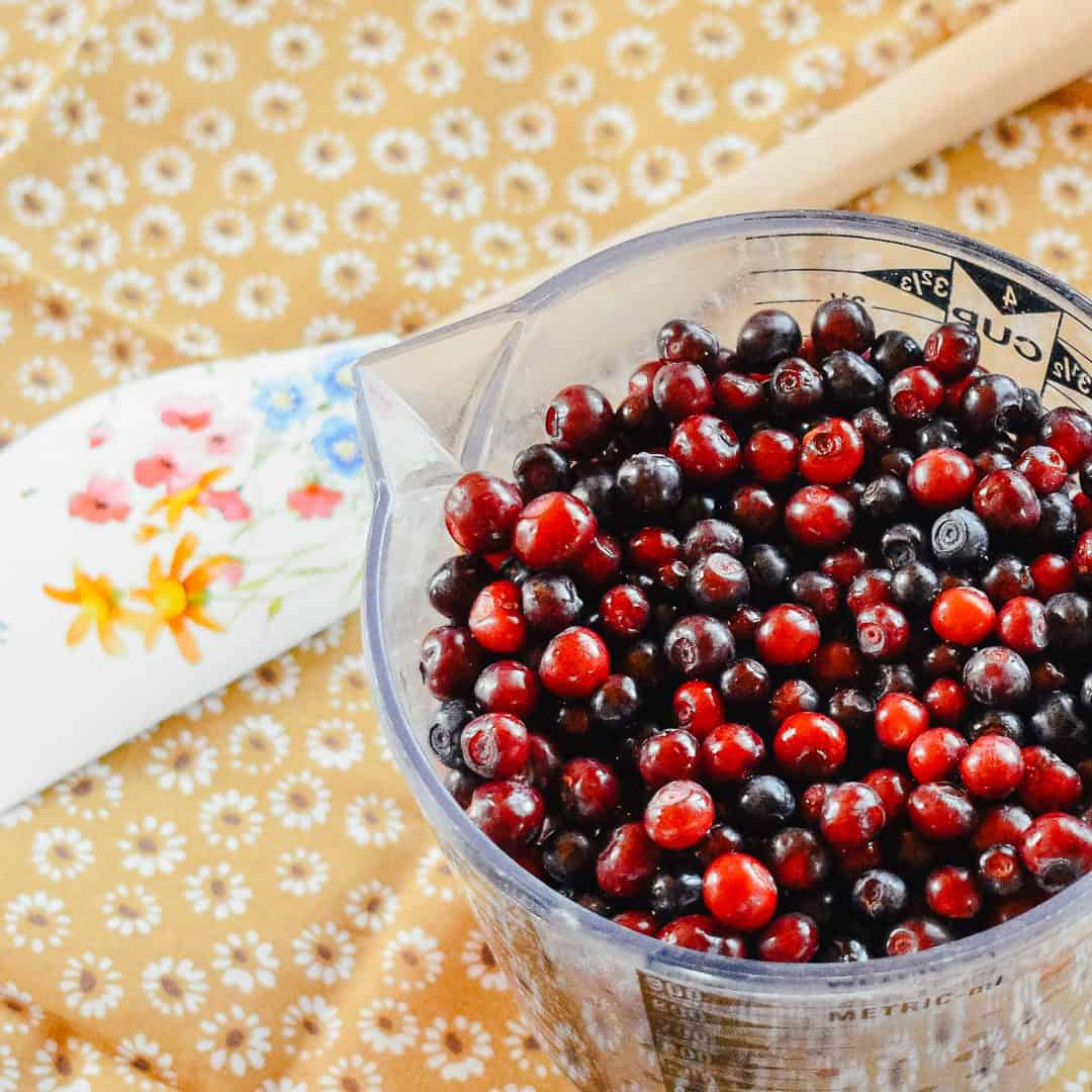 top 10 huckleberry recipes