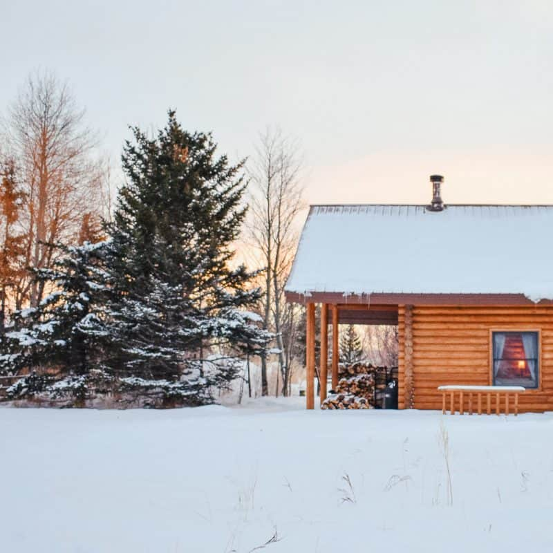 The 3 Best Cabin Books on Amazon