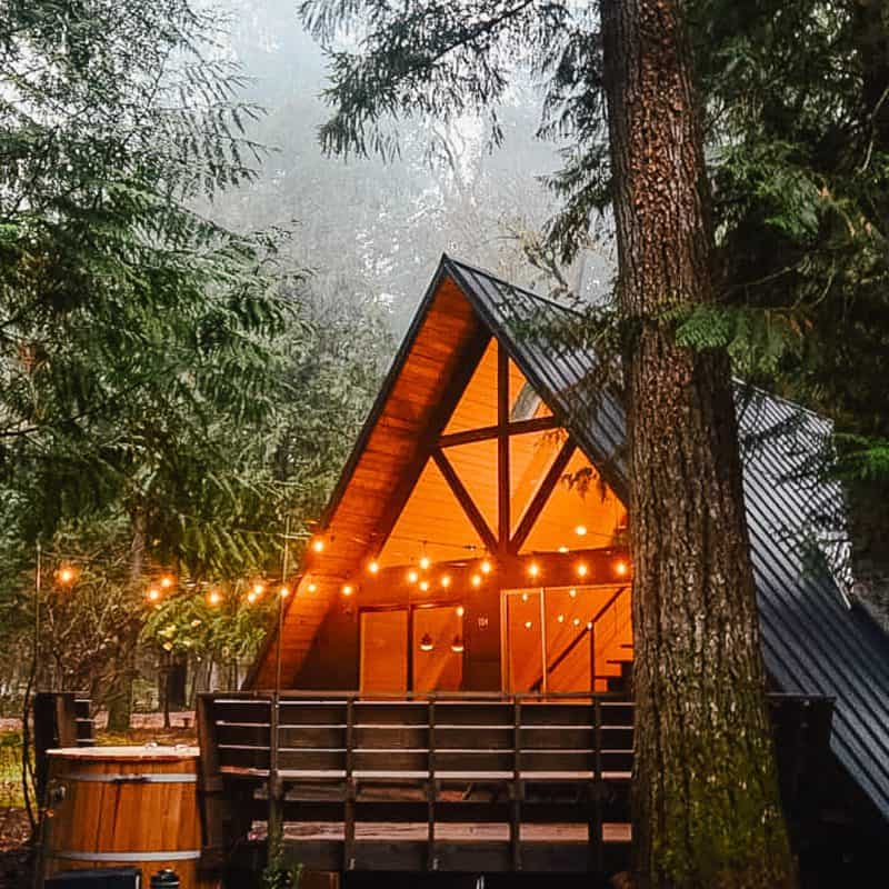 Little Owl Cabin: The Big Success of a Little Cabin in The PNW